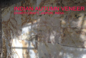 Indian autumn color stone veneer sheets for wall coverings